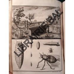 Mémoires de Physique sur l'Art de fabriquer le FER, d'en fondre