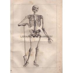 Abrégé d'anatomie, accommodé aux arts de peinture et de sculpture